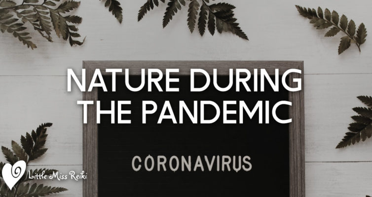 Nature During the Pandemic